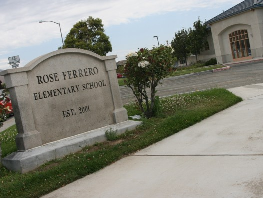 Welcome to Rose Ferrero!